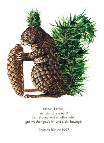 Fabelwesen, Illustration, Eichhörnchen, Malerei,