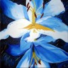 Gelg, Quadrat, Lilien, Blau