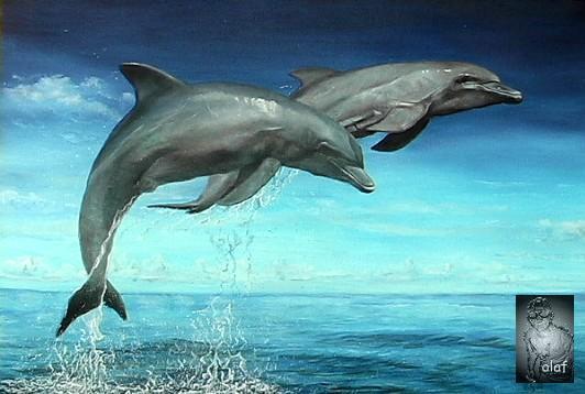 Dupini - delfini Delphin_1_logo