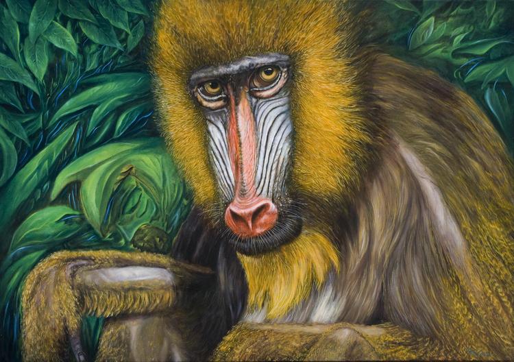 Tiere, Tierportrait, Fantasie, Surreal, Urwald, Tiermalerei