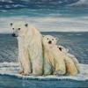 Arktis, Tierportrait, Tiere, Bär