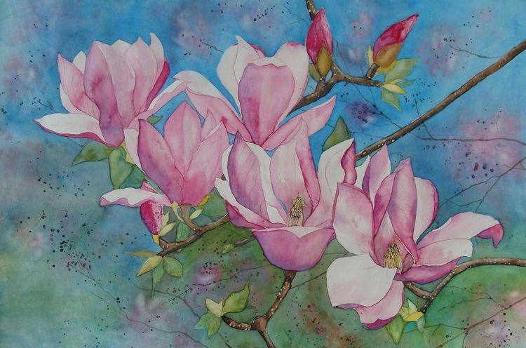 Magnolien, Blumen, Luzern, Pflanzen, Schweiz, Rosa