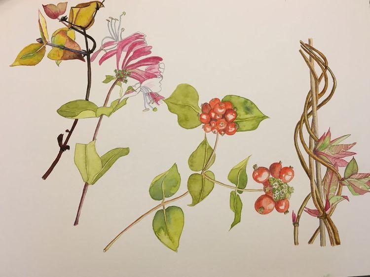 Jahreszeiten, Aquarellmalerei, Aquarell, Studie,