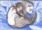 Tiere, Zeichnung, Frettchen, Zeichnungen