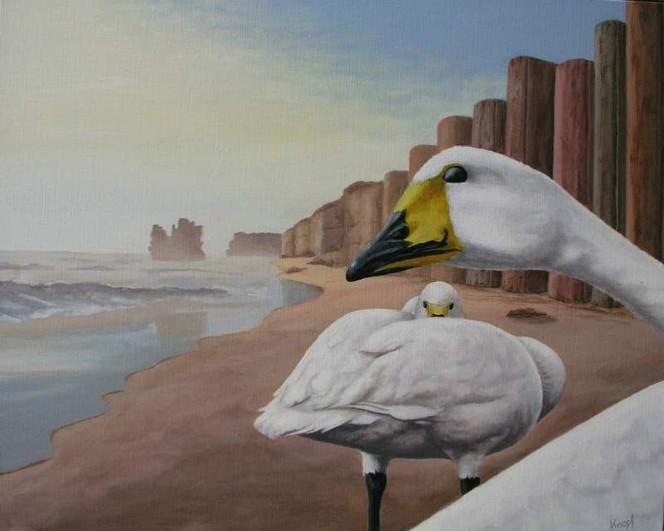 Strand, Meer, Malerei, Schwanen, Buch, Klippe