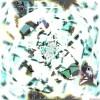 Kristallene Ähnlichkeit - kristall crystal grafik klar winter morgen structural affinity ähnlichkeit similarity struktur editor muster fraktal abstrakt digital computer pc mathe schema konzept ideen kategorie design deco modern moderne mondrian motif element fenster kunst
