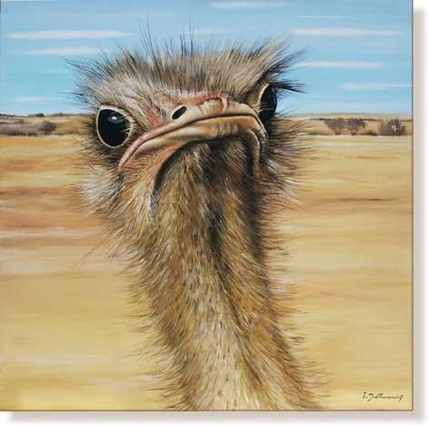 Tiere, Emu, Malerei