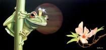 Stillleben, Frosch, Malerei, Tiere