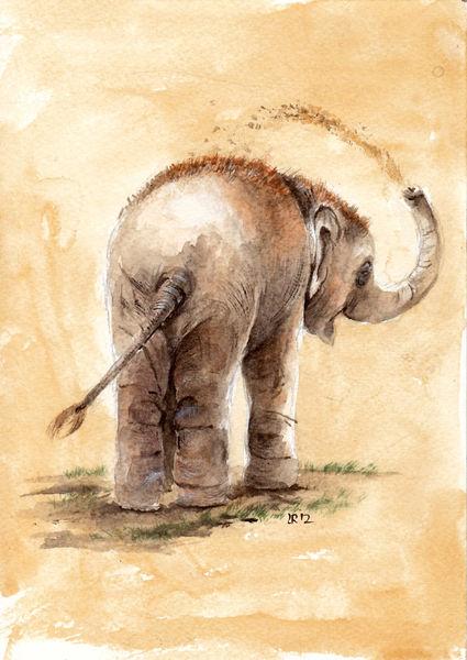 Schmutzig, Indisch, Tiergarten, Baby, Elefant, Malerei