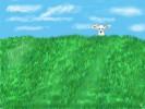 Grün, Himmel, Tiere, Schäfchen