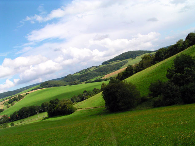 Landschaft, Wiese, Fliegen, Fotografie, Wind