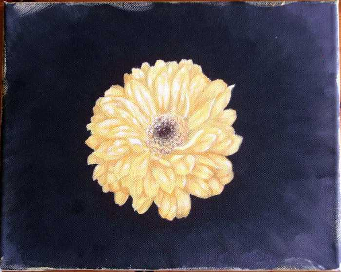 Kunstnet werke malerei pflanzen gelbe gerbera
