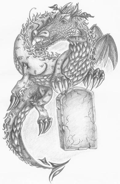 Drache, Skizzen, Tatoo, Zeichnung, Zeichnungen