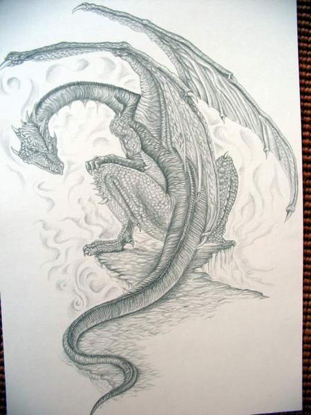 Tattoo, Zeichnung, Skizze, Drache, Zeichnungen