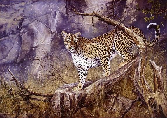 Wildkatze, Katze, Leopard, Malerei