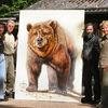 Braunbär, Bär, Pinnwand