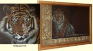 Zeichnung, Tiger, Portrait, Pinnwand
