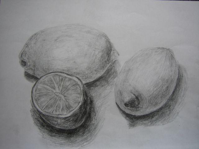 Stillleben, Zitrone, Zeichnung, Zeichnungen