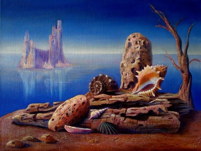 Tod, Insel, Meer, Stillleben, Strand, Muschel