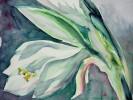 Blumen, Malerei, Stillleben, Weiß