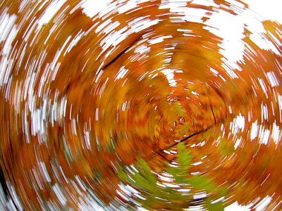 Herbstlaub, Verwischen, Oktober, Abstrakt, Fotografie, Wirbel