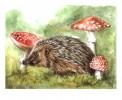 Pilze, Tiere, Figural, Malerei
