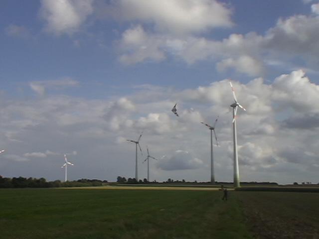 Fotografie, Naturgewalt, Wind, Drache