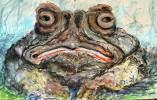 Zeichnung, Zeichnungen, Kröte