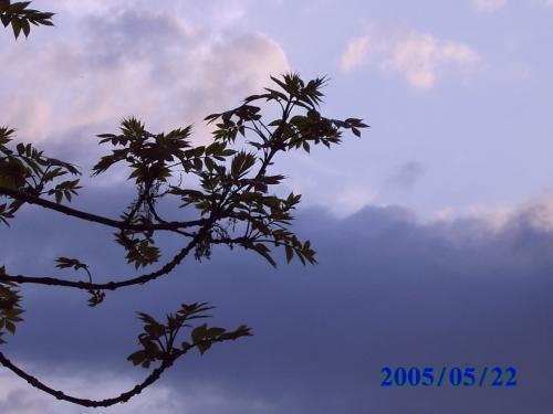 Fotografie, Landschaft, Weg
