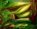 Grün, Malerei, Acrylmalerei, Abstrakt