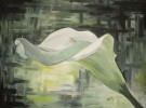 Malerei, Stillleben, Calla