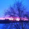 Sonnenaufgang, Schneefeld, Morgenbaum, Fotografie