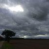 Wolken, Feld, Himmel, Baum