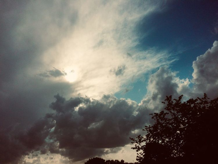 Wolken, Himmel, Wipfel, Mischtechnik