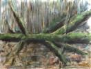 Malerei, Landschaft, Baum, Moos