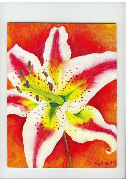 Malerei, Lilie, Rot, Blumen, Weiß, Feuer