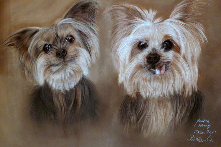 Hund, Pastellmalerei, Malerei, Geschwister,