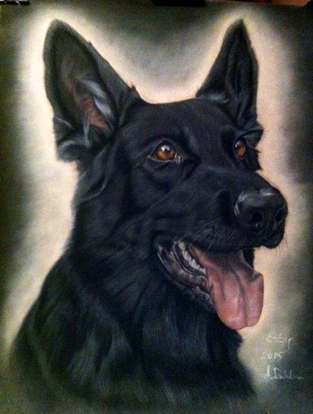 Hund, Zeichnung, Tiere, Pastellmalerei, Malerei,
