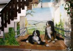 Hund, Ausblick, Treppe, Wandmalerei