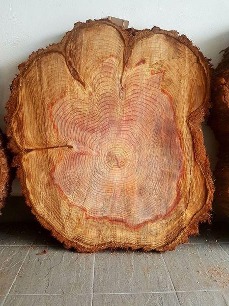 Frage, Tisch, Baumscheiben, Baum, Holz, Kurz