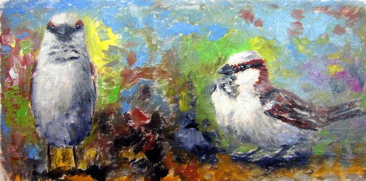 Studie, Ölmalerei, Spatz, Haussperling, Malerei