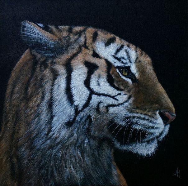 Realismus, Augen, Tiger, Gemälde, Tierwelt, Tiere