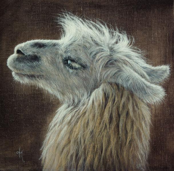 Augen, Hübsche, Realismus, Wildlife realistisch, Malerei,