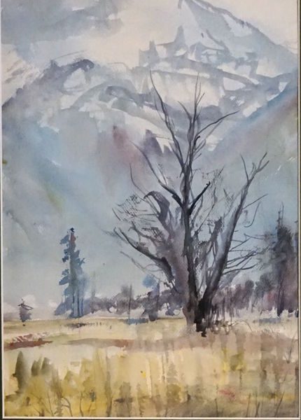 Baum, Moor, Kochel, Winter, Aquarell, Landschaften