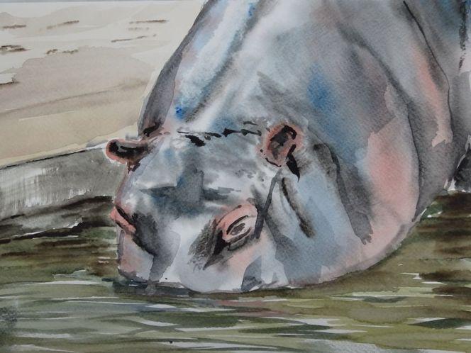 Flusspferd nilpferd, Aquarell, Flusspferd