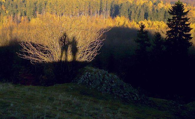 Schattenspiel, Fotografie, Bodenschätze