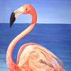 Flamingo, Meer, Wasser, Vogel