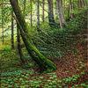 Laubwald, Landschaft, Ölmalerei, Ölfarben