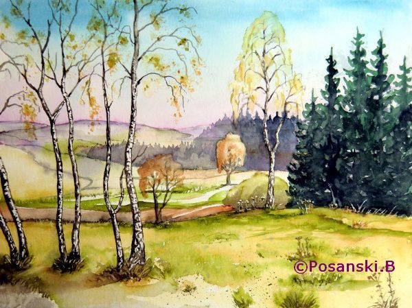 Landschaft, Aquarellmalerei, Birken, Herbst, Aquarell, Herbstlandschaft
