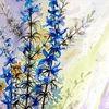 Blumen, Garten, Natur, Aquarell